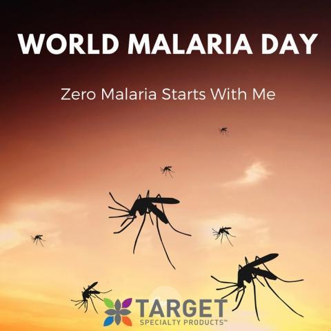 can mosquitoes spread coronavirus